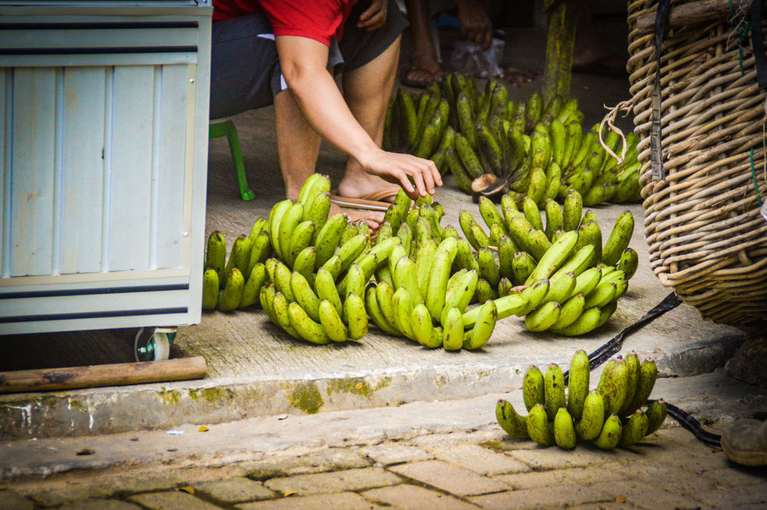 choosing the best bananas Green Bananas Fresh Produce Harvest Agriculture Indonesian Market North Sumatra Fruit Food And Drink Banana Food Healthy Eating Freshness Only Men Adults Only People Human Hand Human Body Part