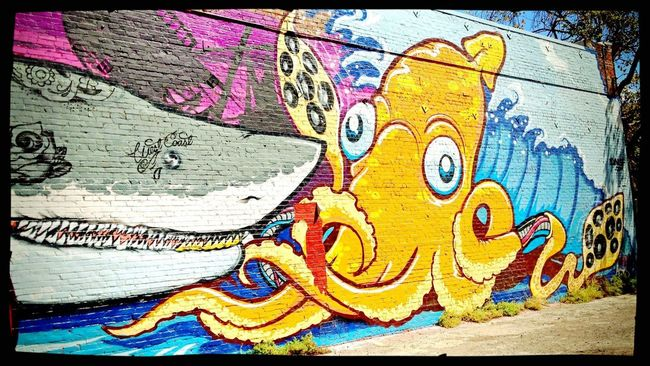 Octopus HDR FX Pro Iphone 5 Muralart