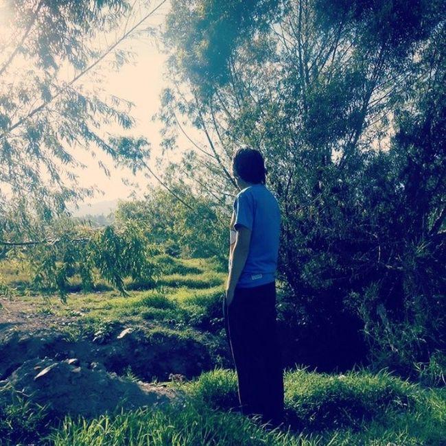 Buena Vibra ... Nature Vibra Sun Insta_pic Beatiful