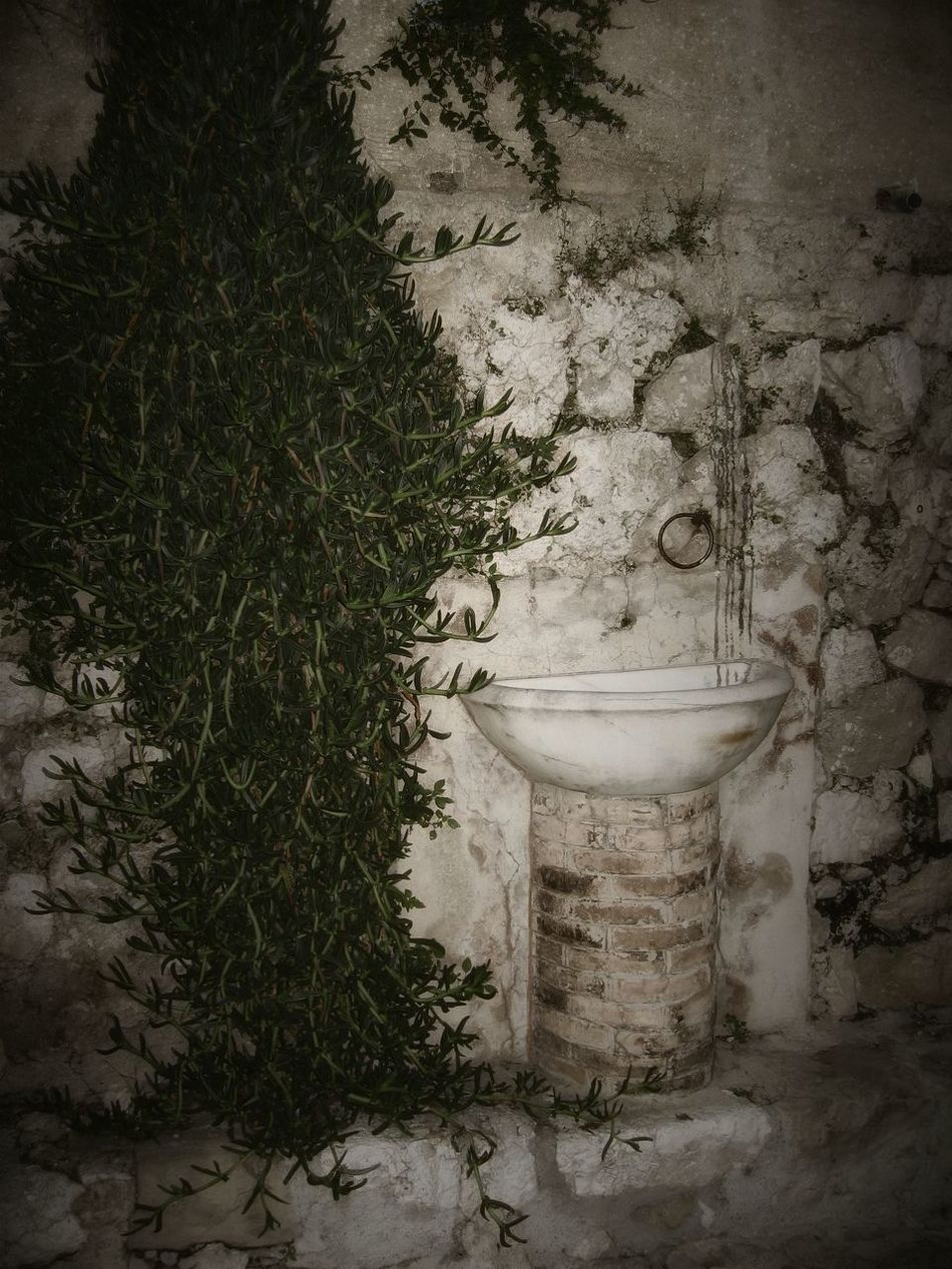 Ancient cistern in French village Ancient Basın Cistern Close-up France Historic No People Old Buildings Plant Vignette