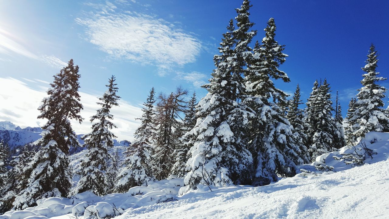 Winter In Austria Hanging Out Check This Out Relaxing Enjoying Life Winter Austria Mountains Skiing Snow ❄ Snow Day ❄ Sunny Day