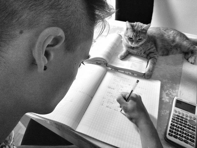 Learn... Blackandwhite School Work School Schoolwithfriend Cat School Life  Work At Home Education