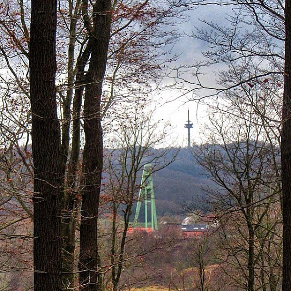 Salzdetfurth Kaliwerk Grießberg Forrest Sklblog
