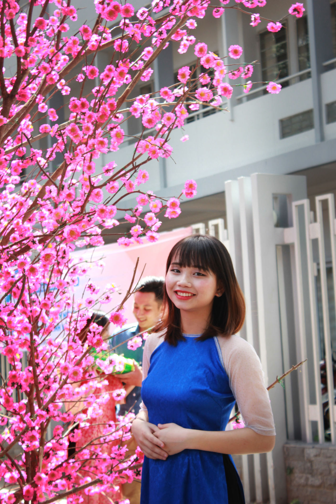 Child Childhood Children Only Communication Decoration Flower Growth Mid Adult Nature One Girl Only One Person Outdoors People People Watching Portrait Real People Smiling Tet 2017 Tet Holiday Tet In Saigon Tetholiday Tết Vietnam Vietnamese Vietnamesegirl