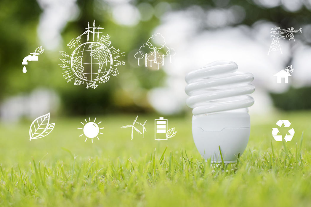 Close-up Connected With Nature Ecology Environmental Conservation Future Graphic Grass Growth Innovation Lightbulb Save Earth Save Ecosystem Save Electricity Save Energy Save Environment Save The Nature Savetheplanet Savings Technology World