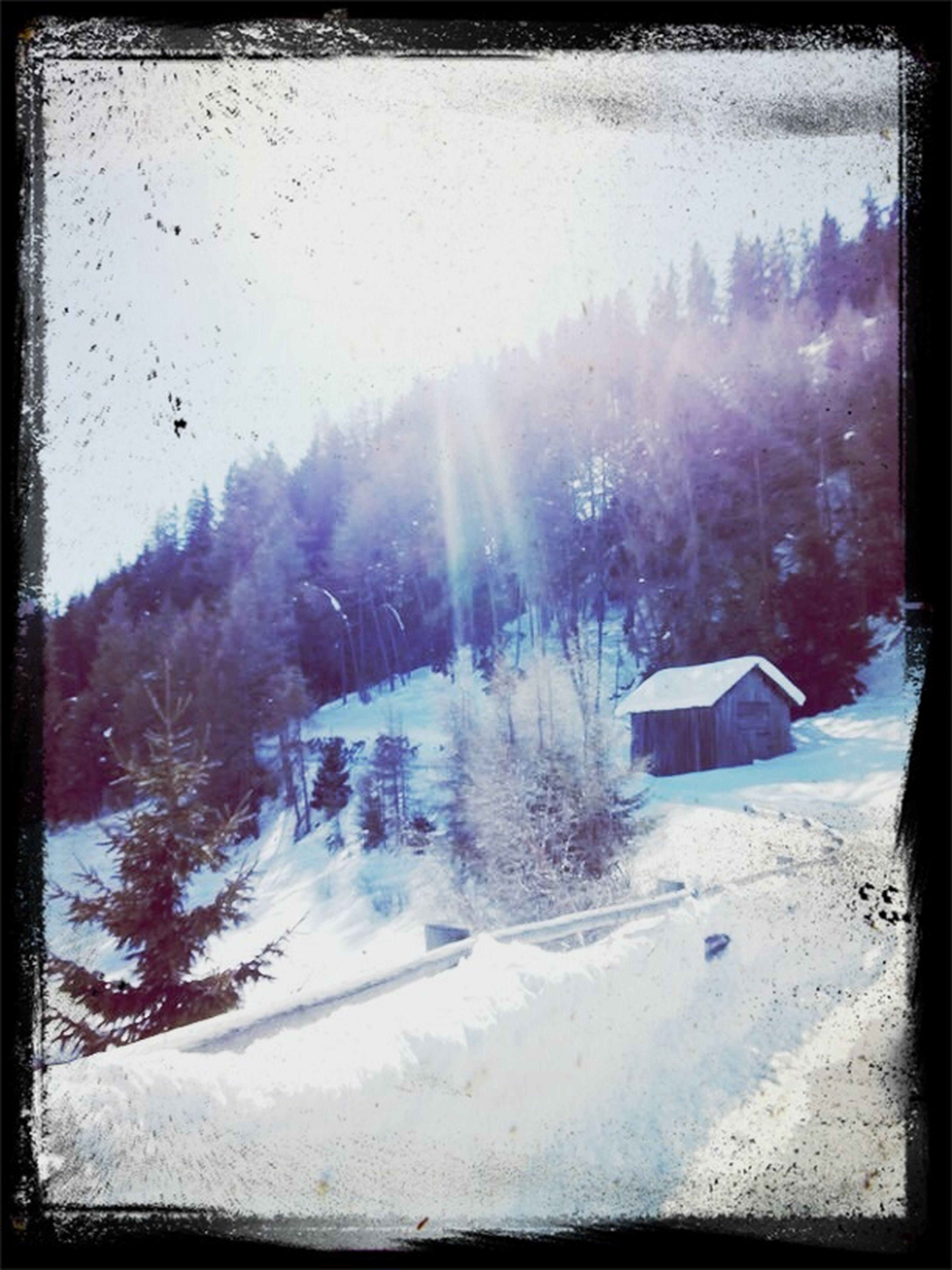 Snow ❄ Sun Beautiful View ❤ Winter Wonderland