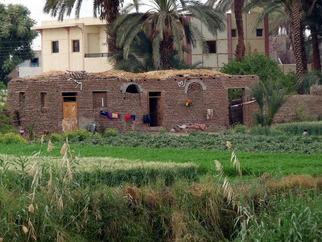 Architecture Bauernhof Building Grass House Leben Am Fluss Nature Ägypten