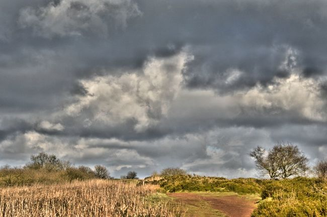 Showcase March A Walk On The Hills Nature On Your Doorstep Hdr_Collection HDR Landscape Landscape_photography Clouds And Sky Cloudporn Grey Sky