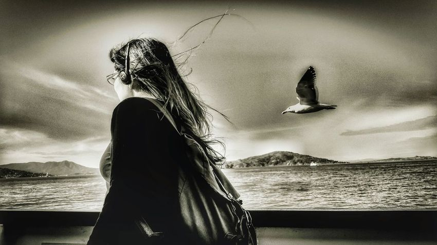 Frozen in time... Photo Of The Day Photography Is Life Camera Love Photo Art EyeEm Best Shots San Francisco Beautiful Boats And Clouds Waterscape Bw_love Bw_society Bw_life Bw_portraits Blackandwhite Photography Boats