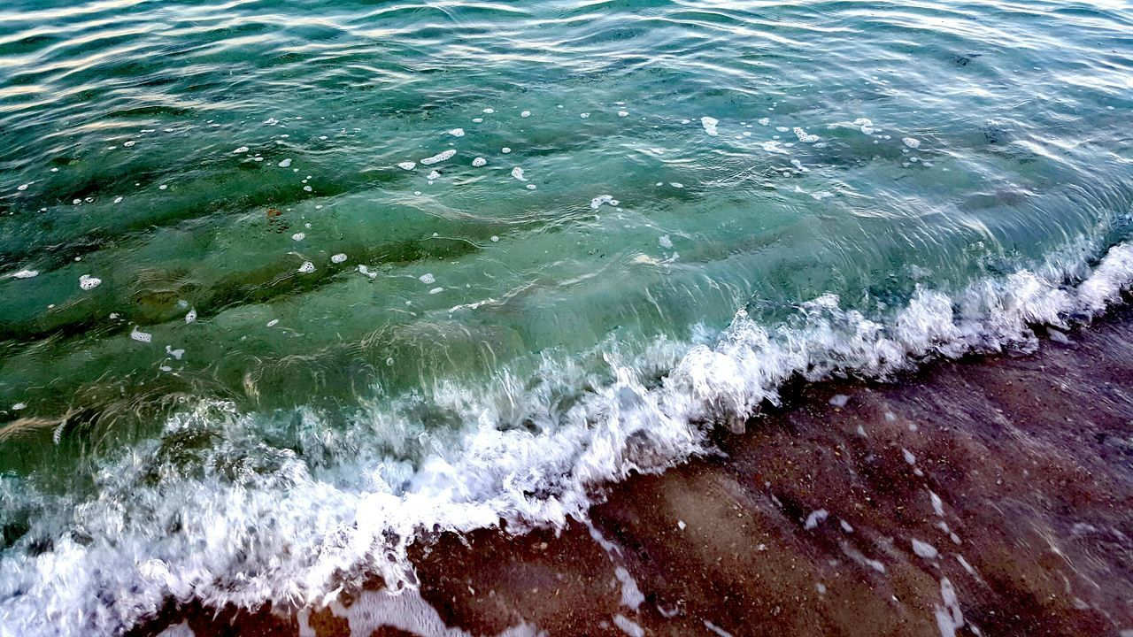 wave, water, sea, surf, motion, nature, no people, high angle view, day, outdoors, beauty in nature, power in nature, close-up