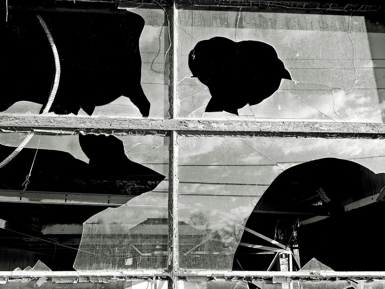 Abandoned Factory Abandoned Buildings Day Built Structure Reflection_collection Close-up Outdoors Architecture Abandoned & Derelict Business Finance And Industry Bygone Era S6 No People Reflection In The Window Window Broken Glass Black And White Black & White Black And White Photography Eyeem Eyesore EyeEm Best Shots - Black + White