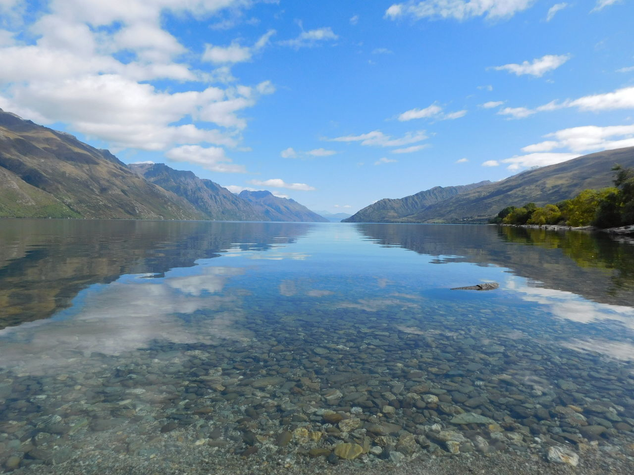 A fine day on the shores or New Zealands Lake Wakatipu Beauty In Nature Blue Cloud - Sky Crystal Clear Waters Day Freshness Horizon Over Water Lake Lakeshore Landscape Mountain Mountain Range Nature Newzealand No People Outdoors Reflection Scenics Sky Tranquility Water