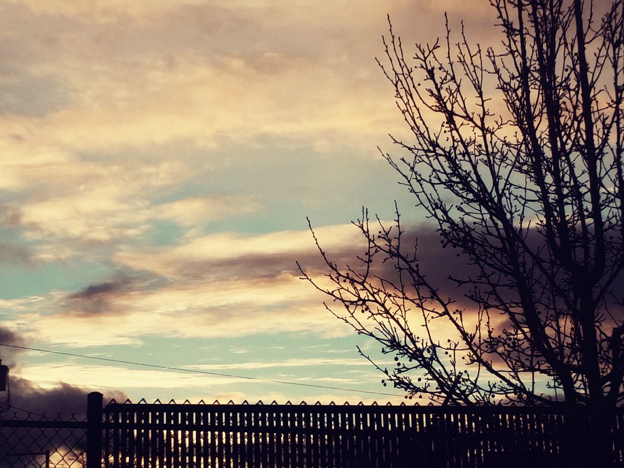 AtMcDonalds Onadrive Fence Trees Landlines