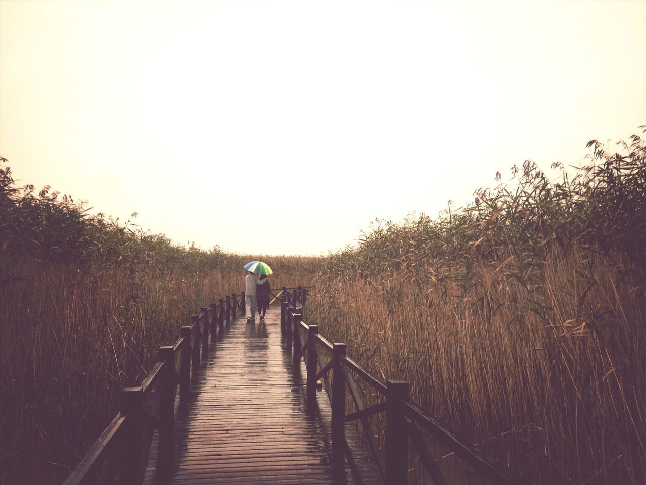View EyeEm Nature Lover Taking Photos Rainy Days Vanishing Point