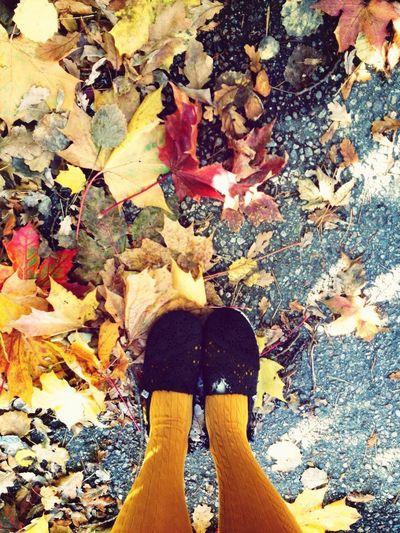 Høst fortjener høstfarger! Autumn Leaves Autumn Colors Fashion