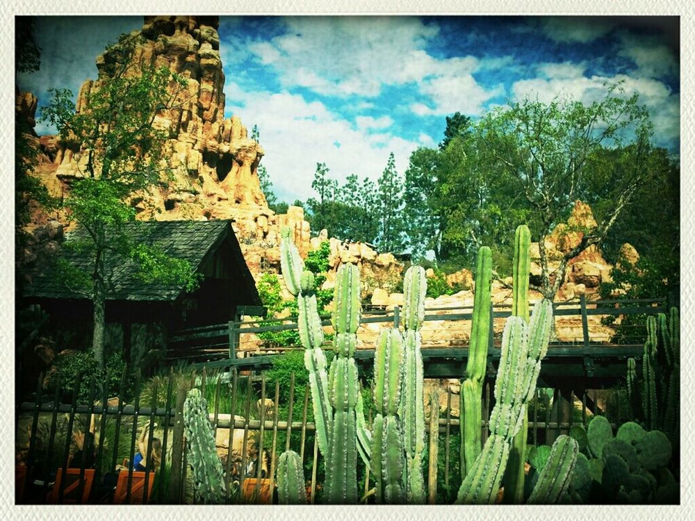 Disneyland at Big Thunder Mountain Railroad by Dustin Carmichael