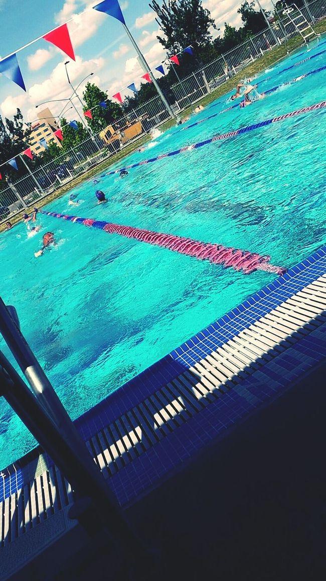 Swimming Swim Meet Swim Meet! Almost Nature