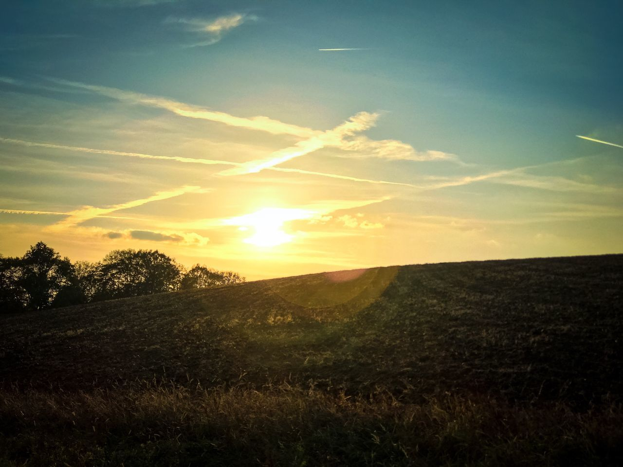 field, sunset, nature, sun, scenics, landscape, tranquil scene, sunbeam, grass, beauty in nature, tranquility, sunlight, sky, no people, idyllic, outdoors, horizon over land, growth, agriculture, rural scene, tree, day