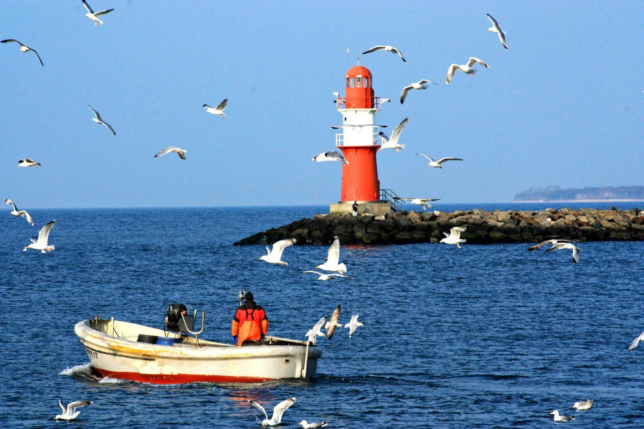 Baltic Baltic Countries Baltic Sea Balticsea Beauty In Nature Blue Boat Germany Hello World Hi! Horizon Over Water Idyllic Lighthouse Lighthouse Mecklenburg Mecklenburg-Vorpommern Mecklenburgvorpommern Mode Of Transport Nature Nautical Vessel Ocean Scenics Sea Seagull Water