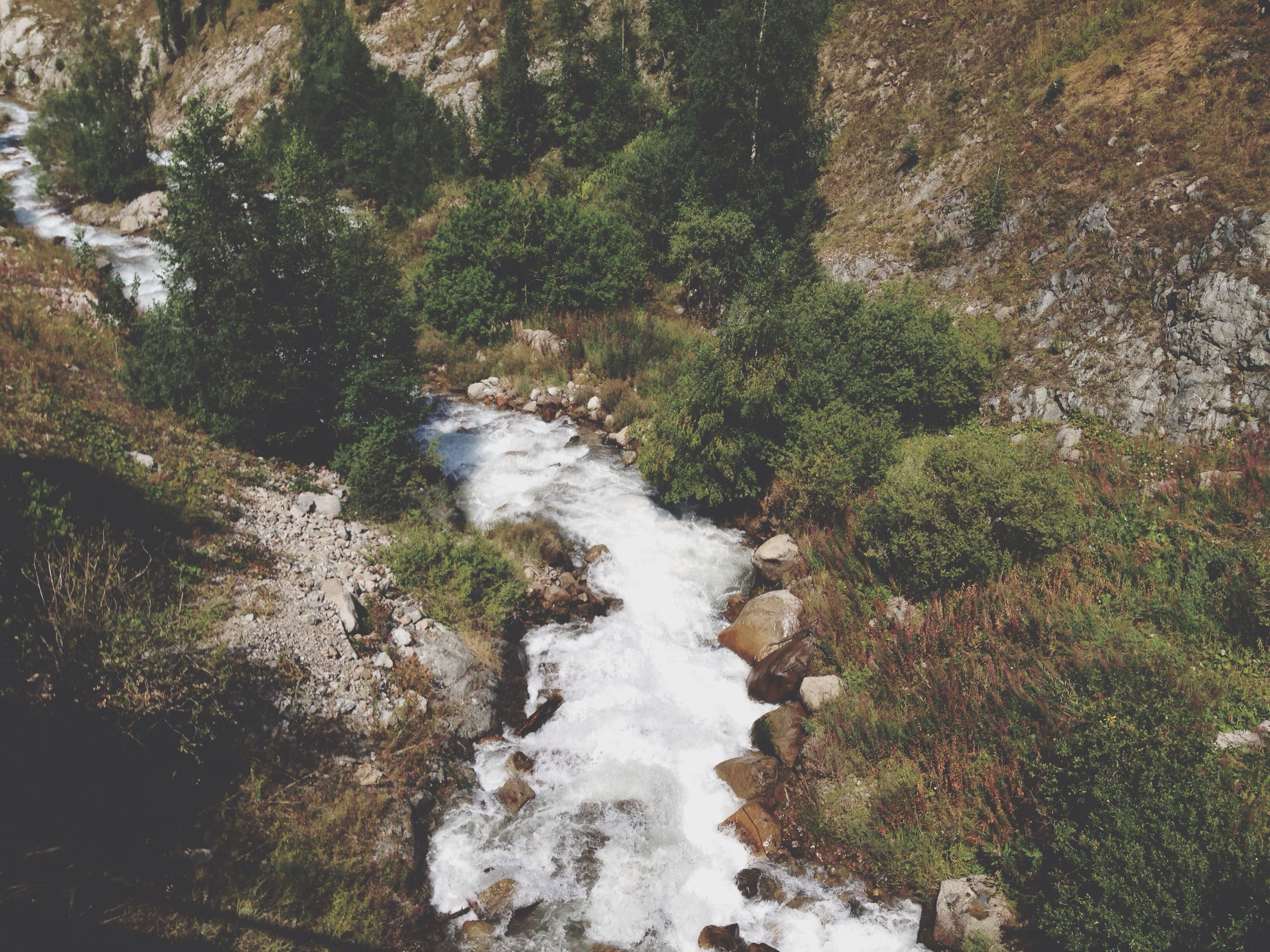 water, stream, flowing water, waterfall, flowing, nature, tree, rock - object, beauty in nature, scenics, forest, motion, tranquility, high angle view, tranquil scene, river, plant, day, growth, outdoors
