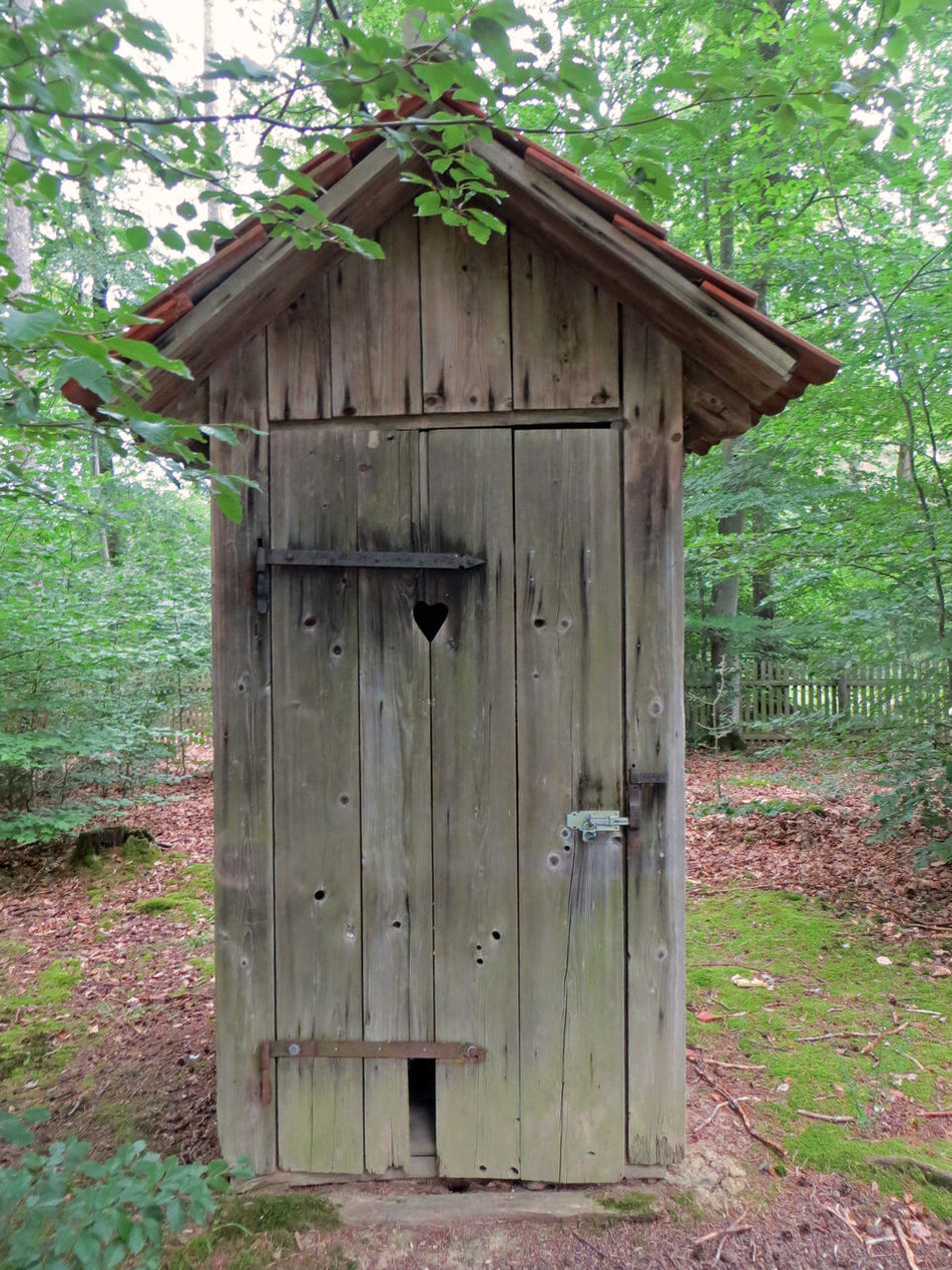 Built Structure Cabin Cabin In The Woods Closed Day Exterior Grass Heart Hut No People Old Outdoors Rest Room Roof Run-down Tree Wood - Material Wooden