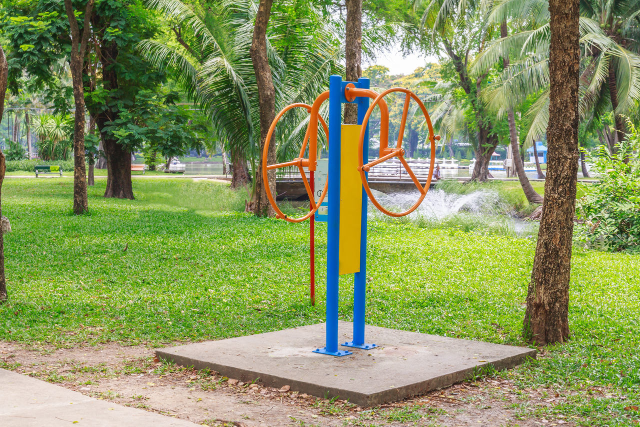 tree, green color, park - man made space, grass, playground, childhood, swing, hanging, day, outdoors, nature, beauty in nature, outdoor play equipment, tree trunk, growth, palm tree, no people, rope swing, sky