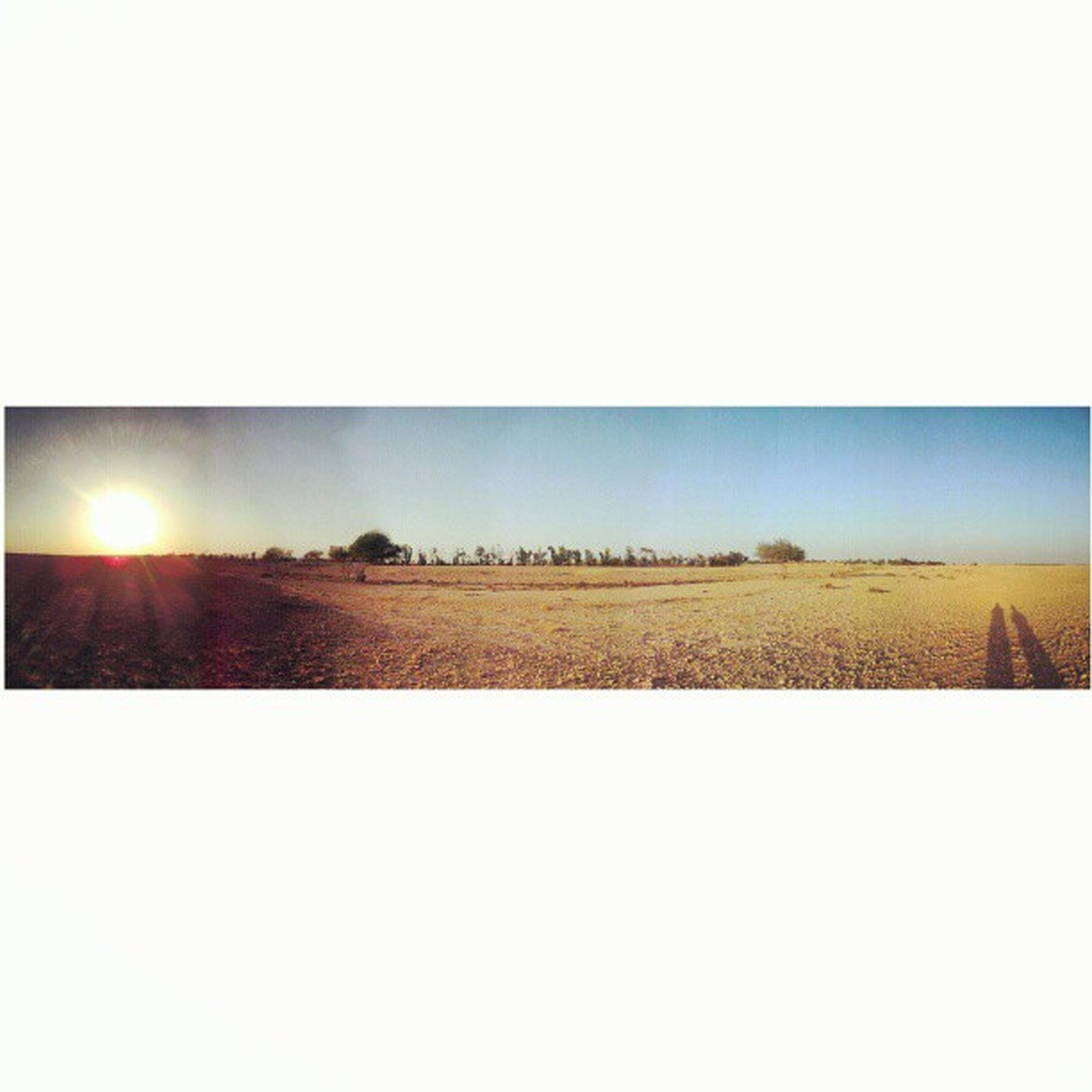 copy space, clear sky, field, landscape, tranquil scene, tranquility, transfer print, scenics, beauty in nature, nature, sunset, auto post production filter, sky, sunlight, rural scene, horizon over land, agriculture, sun, outdoors, no people
