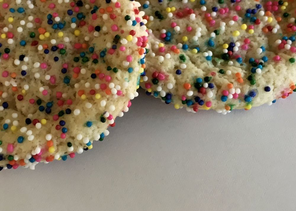 Two nonpareil covered sugar cookies. Cookies Sugar Cookies Nonpareil Multi Colored White Background Ready-to-eat Close-up No People Temptation Freshness Sweet Food Food And Drink Still Life Indulgence Nonpareils