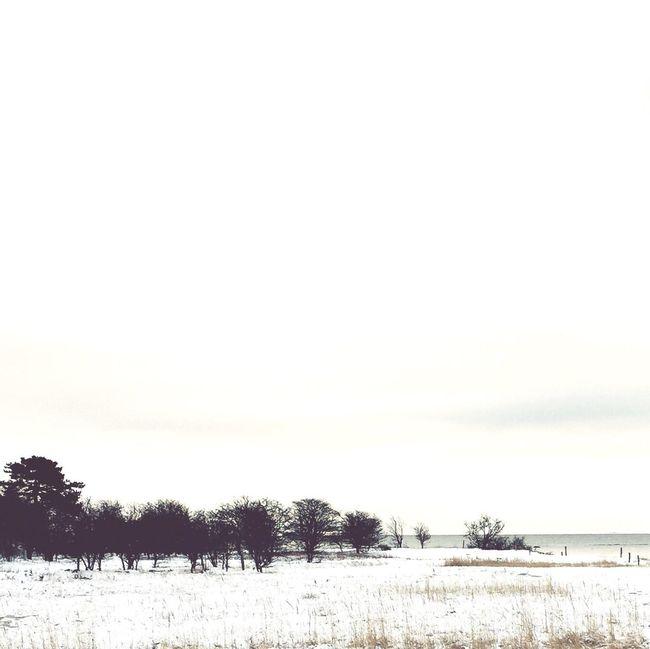No more winter... The Calmness Within EyeEm Nature Lover Winter Wonderland AMPt - Minimalism Nordic Light Seascape