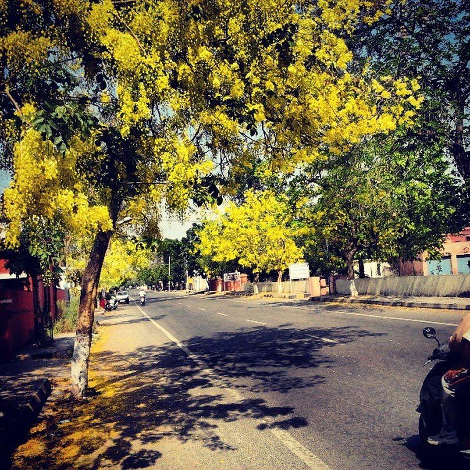Indianroads