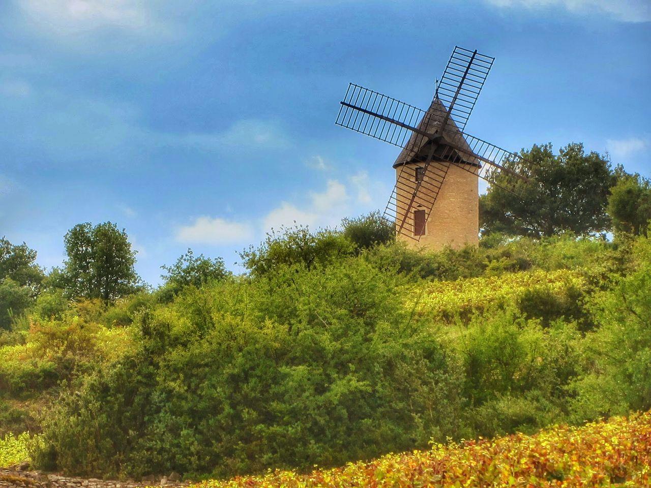 Moulin à Vent Windmill Montrachet France Travelphotography Traveling Travel Travel Destinations