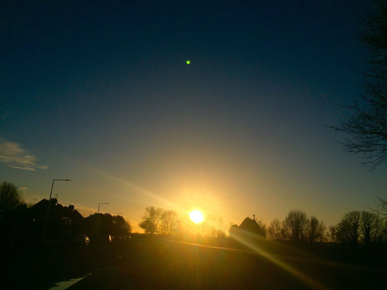 Sun Glare Road Tree Sky Beauty In Nature I Like It IPhone Photography