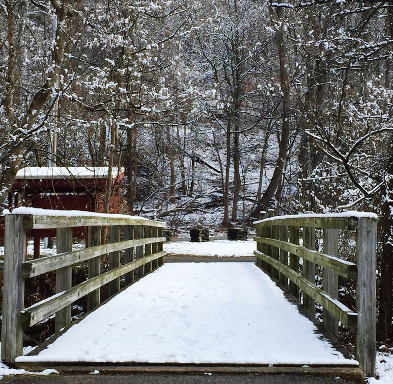 Snowy Day Dream A Little Dream Dream Tranquil Scene Tranquility Peaceful Serenity Snow Covered Restful Place Serene Outdoors Peaceful View Peace And Quiet Snowscape Serene Tranquil Outdoors Textures & Tones Bridge Pathway In The Forest Path Path In Nature Nature_collection Naturelovers Nature Photography