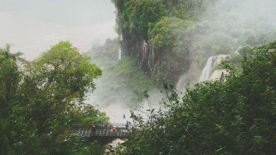 Maravilla del mundo🍃☀ Cataratas Del Iguazu Argentina Argentina First Eyeem Photo