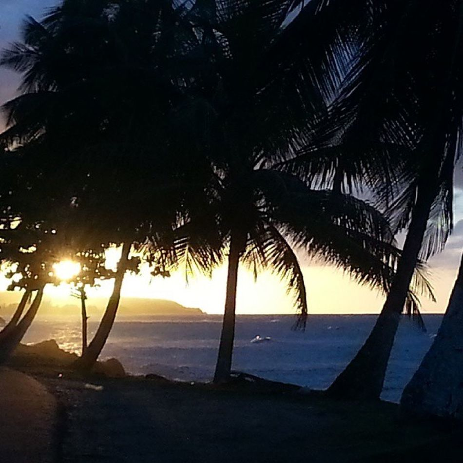 You gonna die! Everyone you know will die someday so enjoy the present Puertorico Sunset Aguada