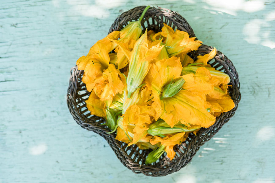 zucchini flowers on country table outdoors Basket Food Mediterranean  Outdoors Pick Rural Scene Still Life TAB Table Zucchini Zucchini Flower Food Stories