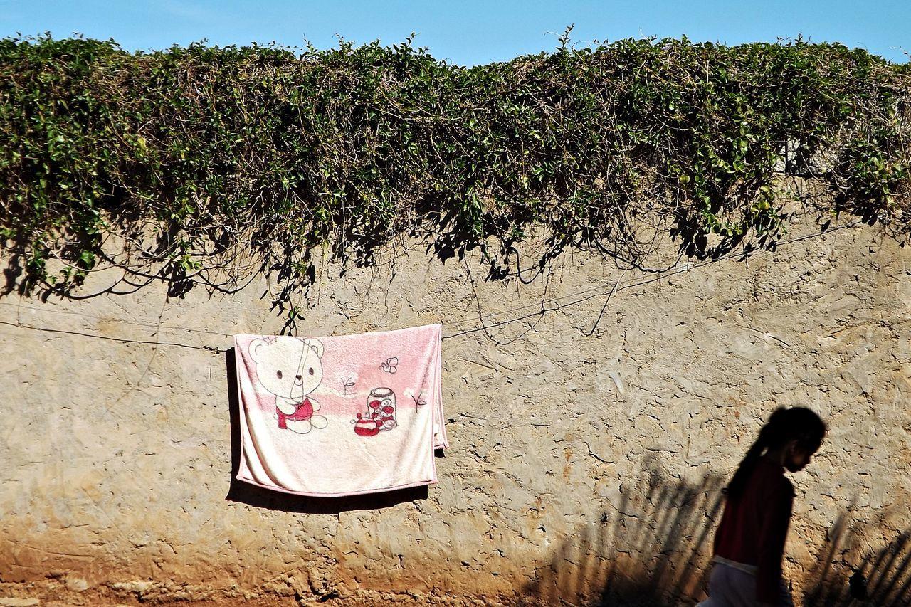 Couverture Day Enfance Enfant Fille Fillette Herbre Mur No People Outdoors Plante Sky Tree
