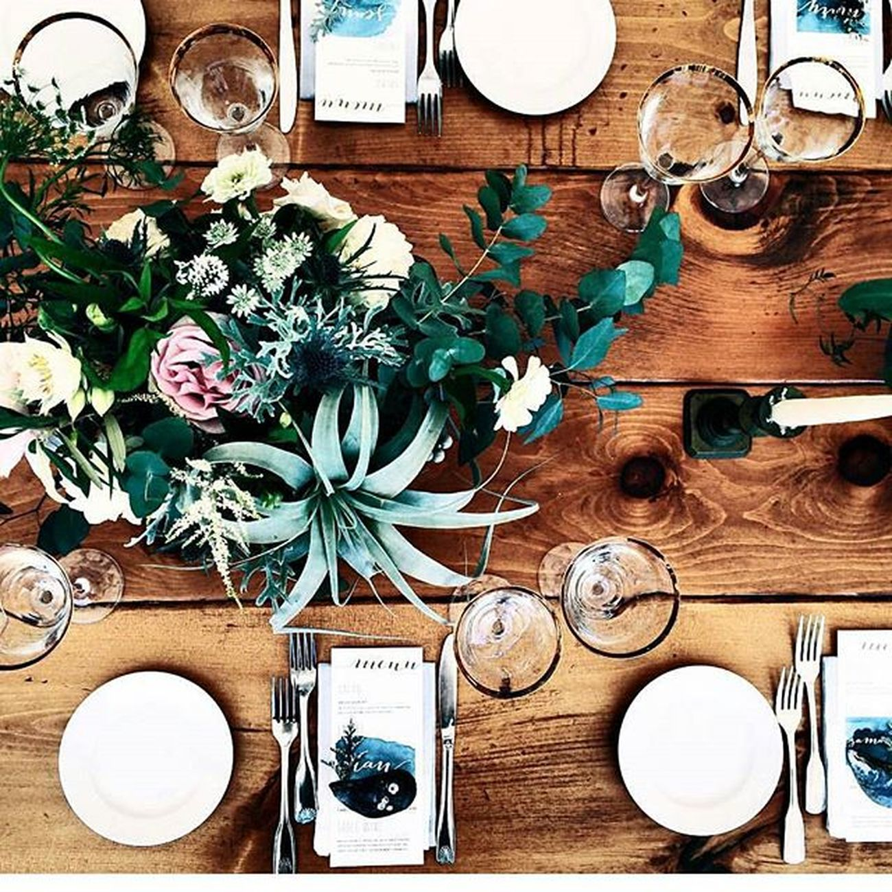 Simply stunning! TBT  to @laurenswells Lwellsevents for including my Ombre Napkins (subtle touch), for Cantupartyoftwo Wedding ! That is seriously one of the biggest Airplants I've ever seen! @wildfolkstudio 📷@cambria_grace Caligraphy @hushlettering paper @bevilacquadesign Wood Floral Wild Events Eventstyling Tablescape Dining Headtable Weddingday  Party Thedennisinn Capecod Capewedding