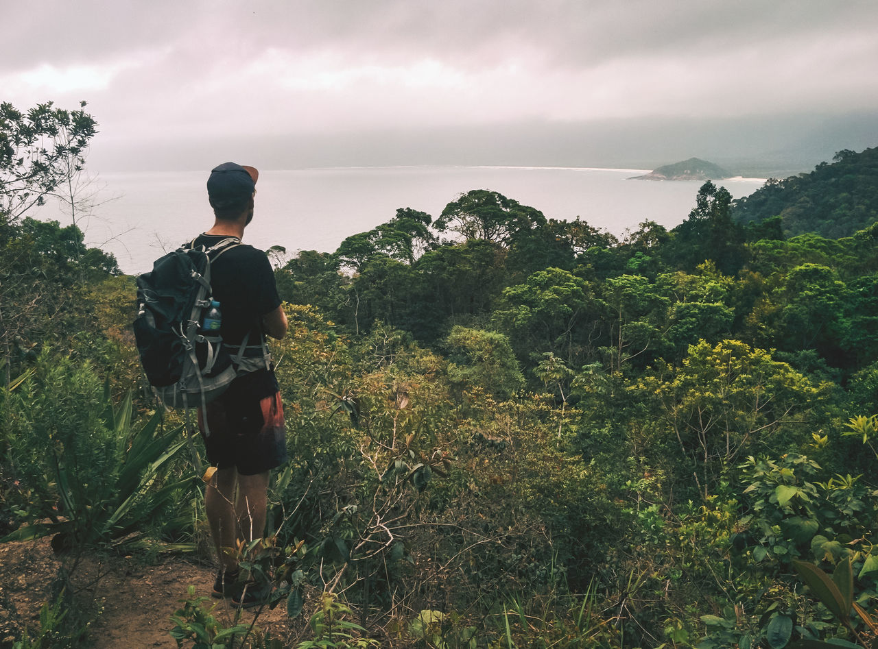 backpack, rear view, nature, hiking, real people, walking, mountain, hiker, sky, adventure, beauty in nature, full length, lifestyles, leisure activity, scenics, men, tree, one person, landscape, plant, outdoors, day, standing, young adult, people