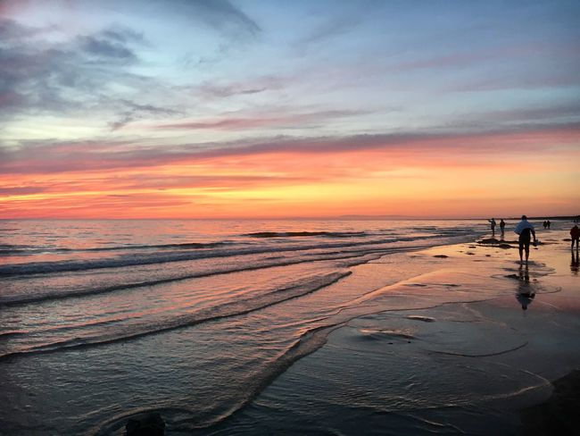 Shadows in senset Sunset Sea Beauty In Nature Nature Scenics Sky Beach Orange Color Tranquil Scene Water Tranquility Horizon Over Water Cloud - Sky Outdoors Sand Silhouette No People Day