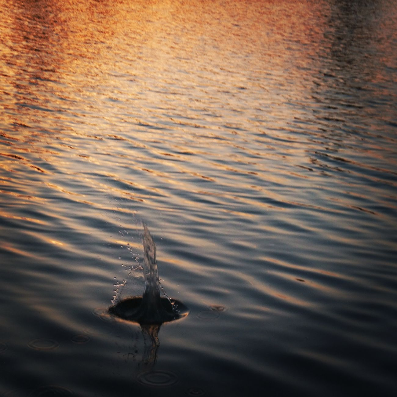 Took so much time 😂😂😂👍👍 Rippled Water Reflection Sunset Lake Outdoors No People Nature Swimming Backgrounds Day Close-up Saudi Arabia Jeddah😍❤️ Water Hard Rock