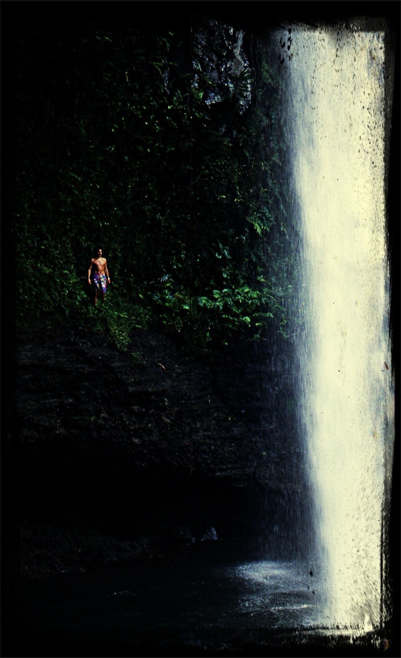 "What Does Peace Look Like To You? ""Blue Lagoon"" movie's waterfall - Taveuni (Fiji) 1993 Movies Scenery Waterfall"