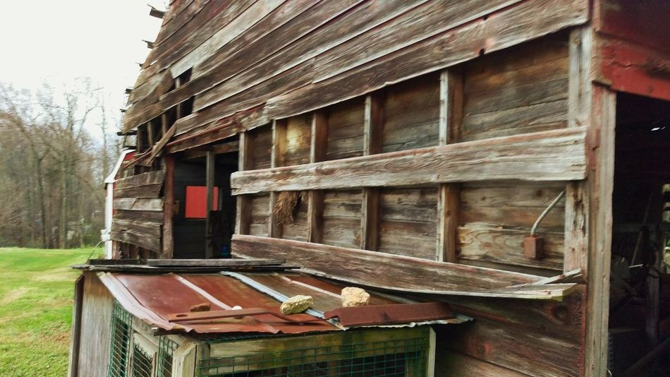 Old Barn Collection Hanging Out Taking Photos Check This Out Enjoying Life Taking Photos North Carolina Close-up Snap Photo Outside Photography Snapshots Of Life Farm Life Ranch Life Southern Living SouthernComfort