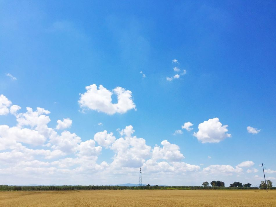 Place Of Heart Capitanata Pianura Puglia Plane Blue Sky Clouds And Sky Grano Wheat Wheat Field Breathing Space