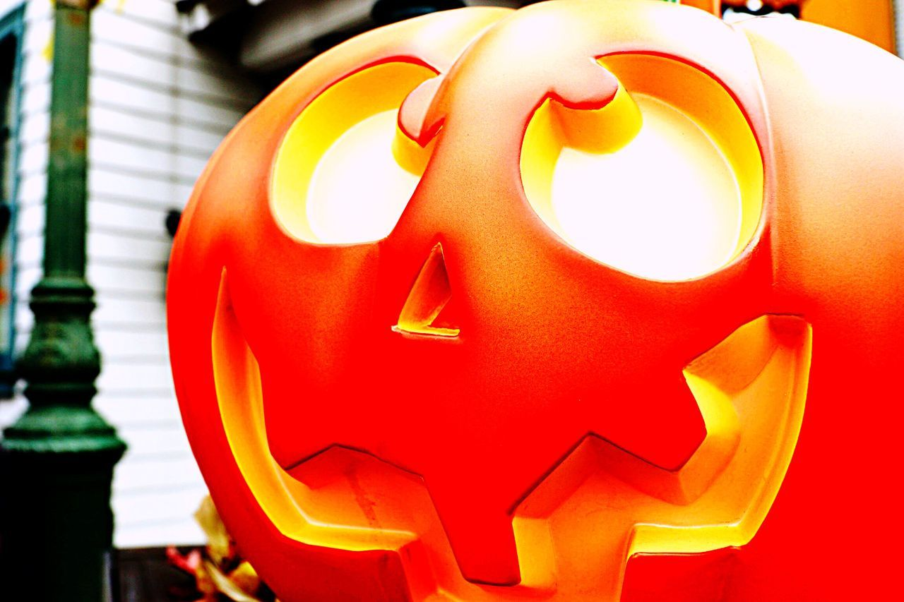 EyeEm Gallery Halloween EyeEm American Stockphotography Stockphoto Halloween_Collection Jackolantern Holloween Decorations Halloween Check This Out Orange Chicken