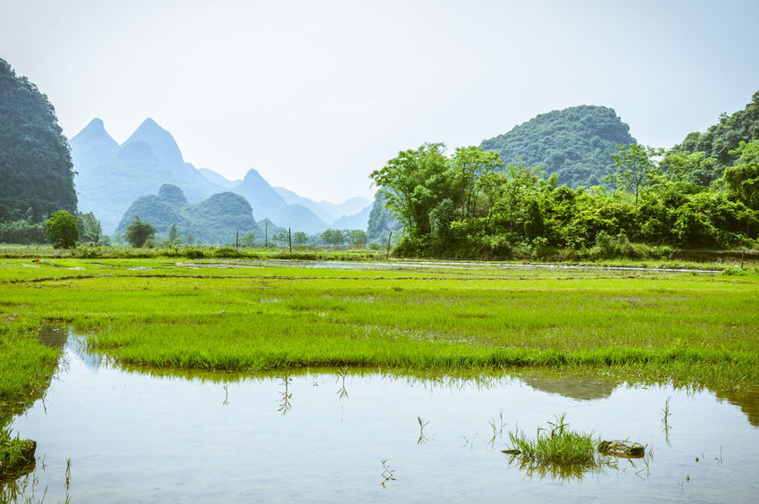 Beautiful countryside scenery in spring Countryside Day Destination Fields Guilin Idyllic Scenery Karst Mountain Landscape Mountains Mountains And Sky Nature Nature Beauty Outdoors Picturesque Reflection Rural Scenery Scenics Sky Springtime Stunning Nature Tranquil Scene Tranquility Travel Water