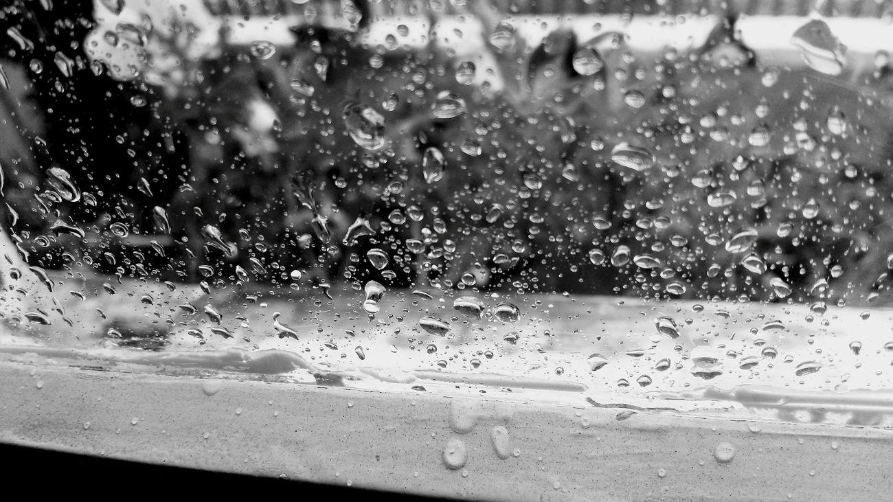 Blob Gout Rain Gotas Da Chuva Chuva Gotas Brasil Brazil Blackandwhite Blackandwhite Photography Black&white