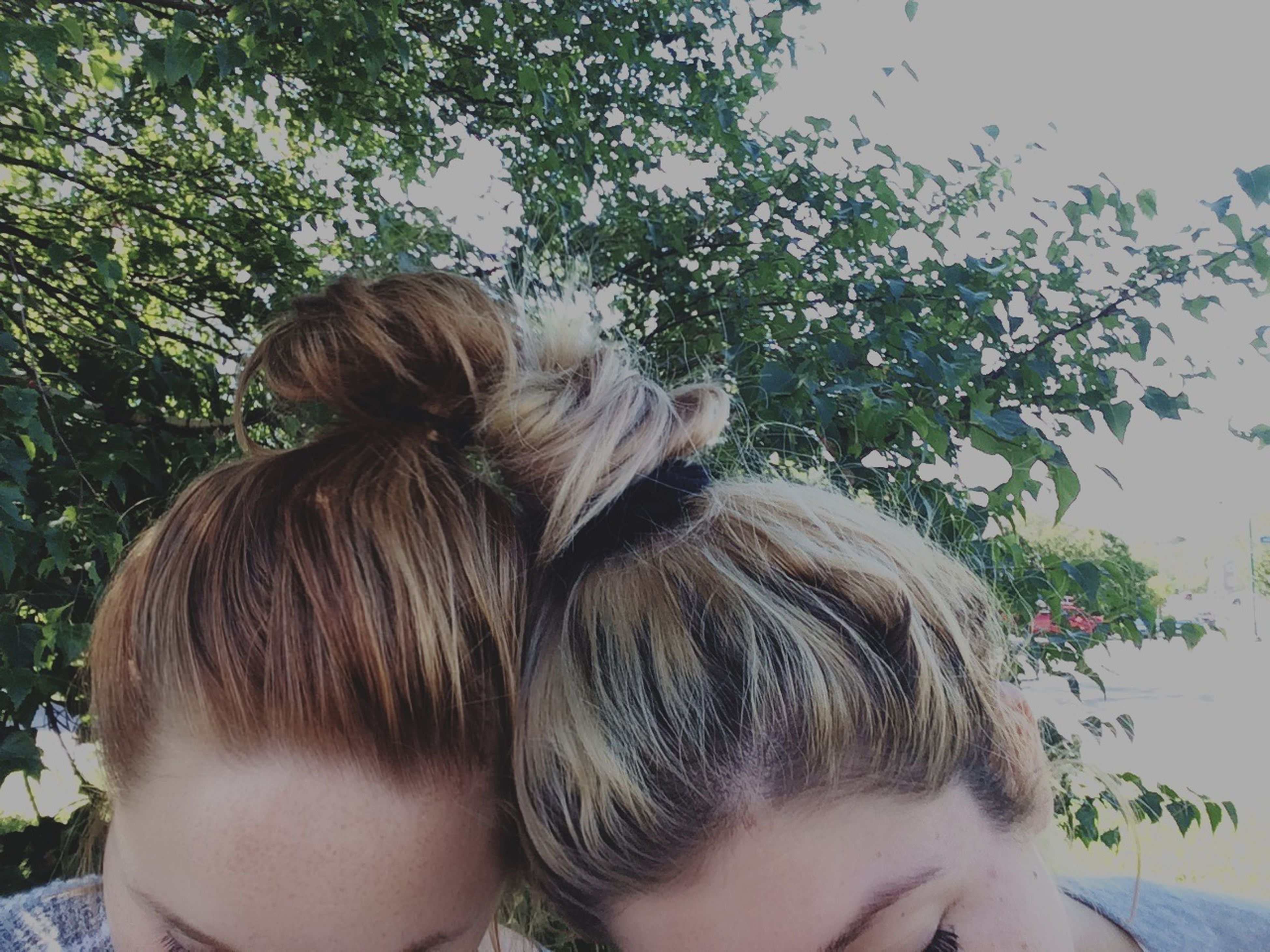 lifestyles, headshot, leisure activity, long hair, childhood, person, girls, elementary age, young women, brown hair, blond hair, rear view, casual clothing, waist up, tree, bonding