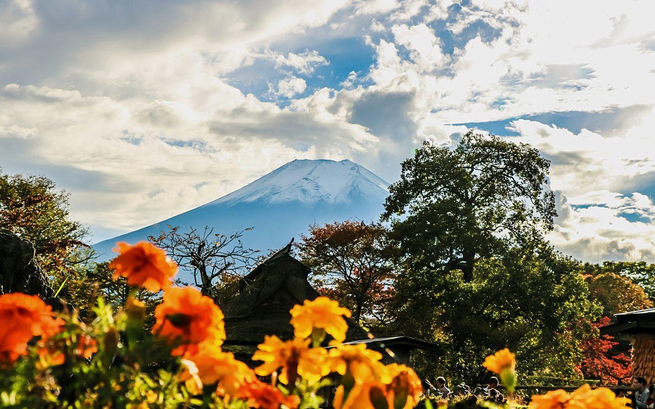 A Series Of Fuji Mountain's Picture 10 Autumn Fujimountain Mt.Fuji EyeEm Best Edits Eye Em Nature Lover Mountain View Colors Of Autumn Fuji Mountain Snow Mountain
