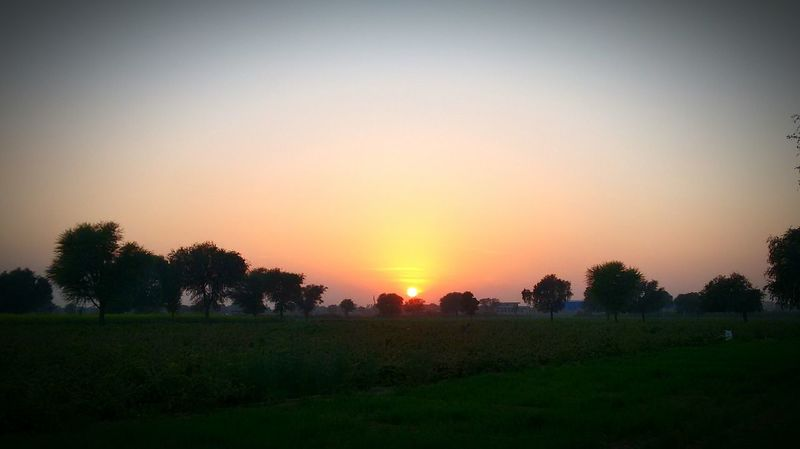 Jaipur India Sunset Evening Silhouette Sunset✨trees✨ Sunset_collection EyeEm Sunset Fields Fieldscape Landscape Wallpaper EyeEm Landscape No People Nature Mobilephotography Sky Colors EyeEm Best Shots - Sunsets + Sunrise Sunset Silhouettes Sunsetlover Sunsetphotographs Enjoying The Sunset Colors Sunset_collection Nopeople